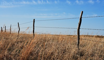 Old barbed wire fence Credit: iStock