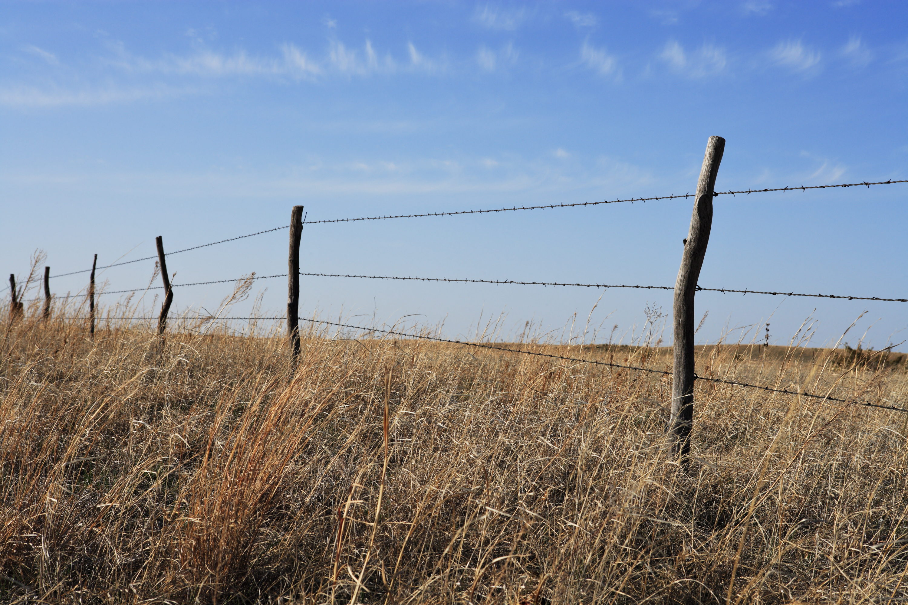 Old Ranch Barbed Wire Fence - DATA WIRING •