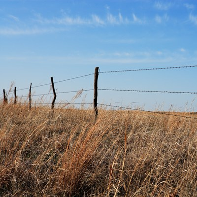 Old barbed wire fence Credit:iStock