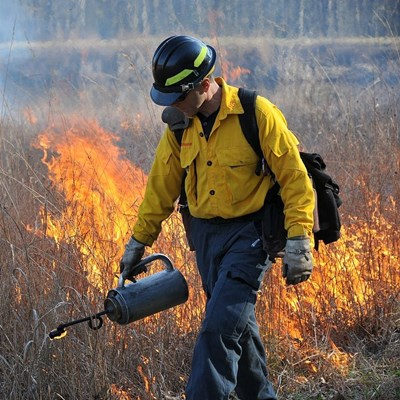 Conducting a prescribed burn.  Credit: