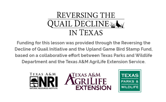 "A funding statement which reads, ""Funding for this lesson was provided through the Reversing the Decline of Quail Initiative and the Upland Game Bird Stamp Fund, based on a collaborative effort between Texas Parks and Wildlife Department and the Texas A&M AgriLife Extension Service."""