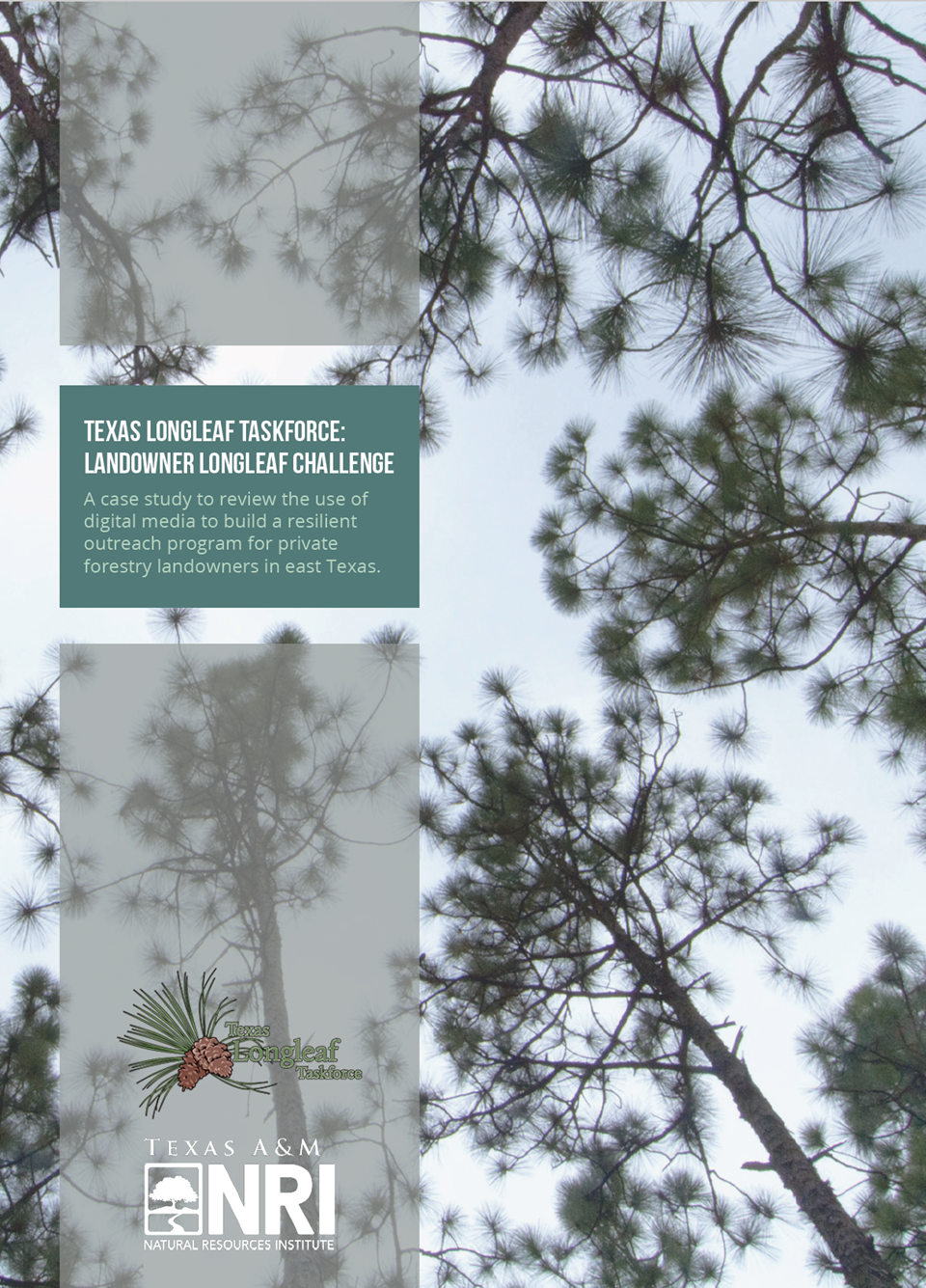 Texas Longleaf Taskforce: Landowner Longleaf Challenge